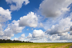 Empty country landscape with cloudy sky Stock Photo