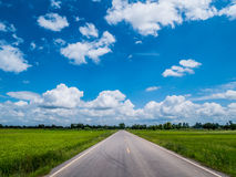 Empty country road through the agricultural fields. stock photo