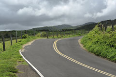 Empty country road. On the grassy hills of Maui, Hawaii Royalty Free Stock Image