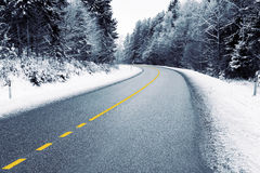 Empty country road in winter. Empty country road in snowy forest in winter Royalty Free Stock Photos