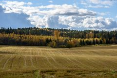 Empty countryside fields in late autumn. Overcast day royalty free stock photography