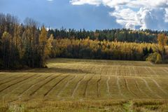 Empty countryside fields in late autumn. Overcast day stock photo