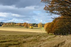 Empty countryside fields in late autumn. Overcast day royalty free stock photo