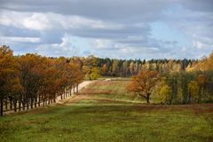 Empty countryside fields in late autumn. Overcast day royalty free stock photos
