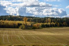 Empty countryside fields in late autumn. Overcast day stock photos