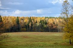 Empty countryside fields in late autumn. Overcast day royalty free stock images