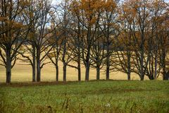 Empty countryside fields in late autumn. Overcast day stock photography