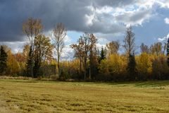 Empty countryside fields in late autumn. Overcast day stock image
