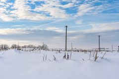 Empty Countryside Landscape in Sunny Winter Day with Snow Covering the Ground with Power Lines in Frame, Abstract Background with. Deep Look - Concept of Fun stock photo