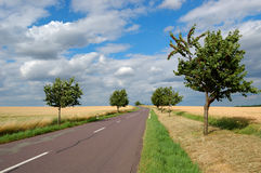 Empty countryside road Royalty Free Stock Image