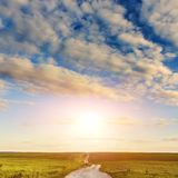 Empty countryside road through agricultural fields with wheat. Rural landscape at sunset Royalty Free Stock Photo