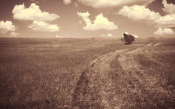 Empty countryside road through fields with cloud. Royalty Free Stock Image