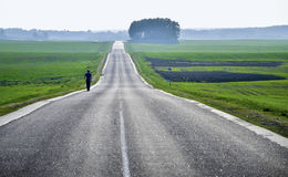 Empty countryside road through fields with wheat, sky. Empty countryside road through fields with wheat Royalty Free Stock Photo