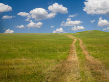 Empty countryside road through green field with a blue sky. Stock Photo