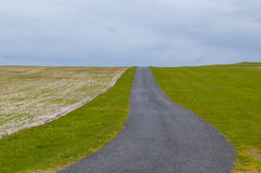 Empty countryside road running between green pastures. And cultivated fields Royalty Free Stock Images
