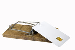 Empty credit card in mousetrap Stock Photos