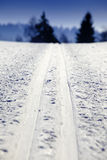 Empty cross-country ski track Stock Photography
