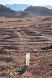 Empty crumpled plastic bottles of water abandoned on the desert Royalty Free Stock Photography