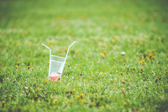 Empty cup from drinks with straws Royalty Free Stock Image