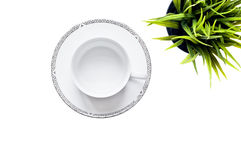 Empty cup and saucer with plant. Top view of an empty white cup and saucer against a white background with a green potted plant Stock Images