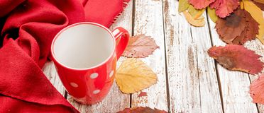 Empty cup for tea, dry red leaves on autumn day. Empty red cup for tea, dry fallen red leaves on autumn day on rustic wooden table, copy space, autumn concept royalty free stock photo