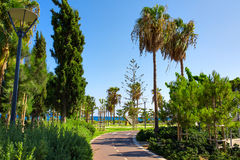 Empty cycling track along the park near the Mediterranean sea. In Limassol, Cyprus stock photo