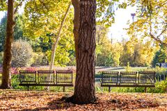 View from a back at empty dark metal benches on a side of a park pond. stock images