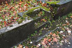 Empty dark stone stairs with red leaves Stock Images