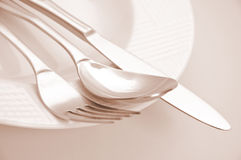 Empty dinner plate. With brown toned Royalty Free Stock Images