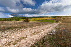 Empty dirt road at autumn sunny day Royalty Free Stock Photos