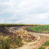 Empty dirt road Royalty Free Stock Photography