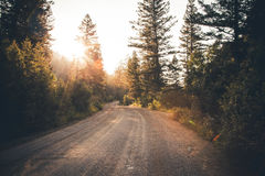 Empty Dirt Road during a Sunrise View Royalty Free Stock Image