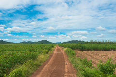 Empty Dirt road   to the mountains And blue sky. For background. Empty Dirt road   to the mountains And blue sky Stock Photo