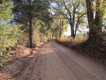 Empty dirt road Stock Images