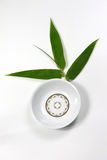 Empty dish. Full view of a empty dish with bamboo leaf on the white backgound Stock Photos