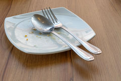 Empty dish after lunch Royalty Free Stock Photos