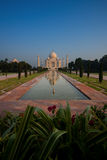 Empty Distant Taj Mahal Reflection in Fountain Royalty Free Stock Images