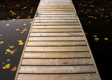 Empty dock in fall. Dock in harbour in fall, with leaves floating Stock Image