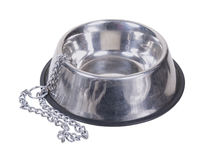 Empty Dog Bowl and Chain Stock Image