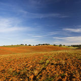 Empty and dry rural landscape Stock Images