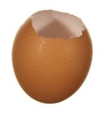 Empty egg brown Stock Images