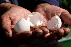 Empty egg shells in the hands of an elderly person. The concept. Of poverty in retirement Royalty Free Stock Photography