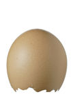 Empty eggshell Royalty Free Stock Photos