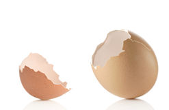 Empty eggshell Royalty Free Stock Photography