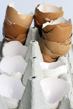 Empty eggshells in an egg carton Royalty Free Stock Image