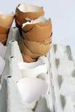 Empty eggshells in an egg carton Royalty Free Stock Photography