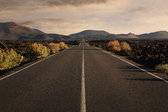 Empty endless road Stock Image