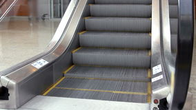 Empty escalator stairs moving up. In modern office building stock footage
