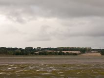 Empty estuary scene tide out with seaguls overcast country lands Stock Photography