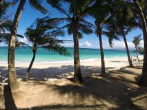 Exotic beach with palm trees. Empty exotic beach with palm trees Royalty Free Stock Photography
